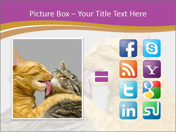 Cats PowerPoint Template - Slide 21
