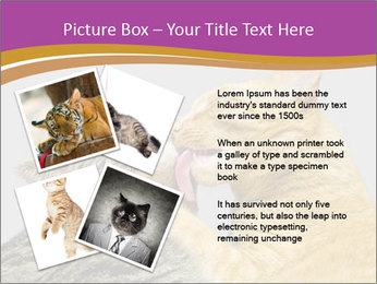 Cats PowerPoint Template - Slide 23
