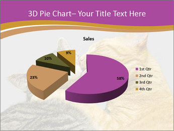 Cats PowerPoint Template - Slide 35