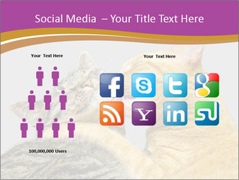Cats PowerPoint Template - Slide 5