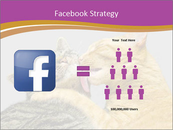 Cats PowerPoint Template - Slide 7
