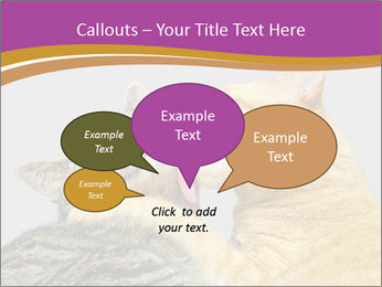 Cats PowerPoint Templates - Slide 73