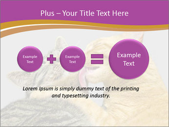 Cats PowerPoint Template - Slide 75
