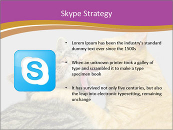 Cats PowerPoint Template - Slide 8