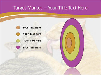 Cats PowerPoint Template - Slide 84