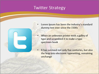 Cats PowerPoint Template - Slide 9