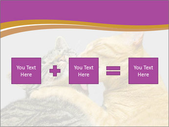 Cats PowerPoint Template - Slide 95