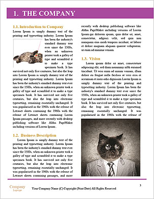 0000092535 Word Template - Page 3