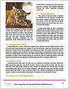0000092535 Word Template - Page 4