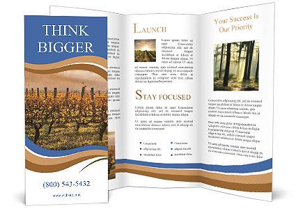 0000092536 Brochure Templates