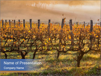 Vineyards PowerPoint Templates - Slide 1