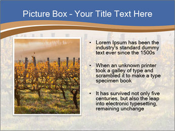 Vineyards PowerPoint Templates - Slide 13