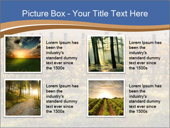 Vineyards PowerPoint Templates - Slide 14