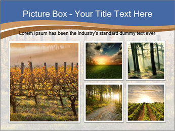 Vineyards PowerPoint Templates - Slide 19