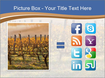 Vineyards PowerPoint Templates - Slide 21