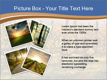 Vineyards PowerPoint Templates - Slide 23