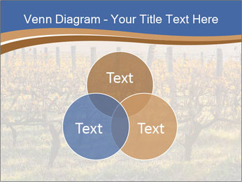 Vineyards PowerPoint Templates - Slide 33
