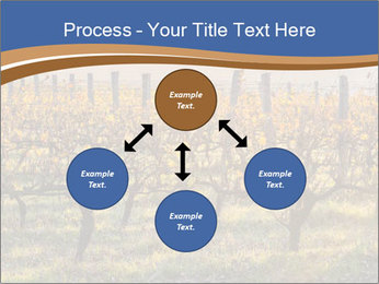 Vineyards PowerPoint Templates - Slide 91