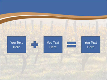 Vineyards PowerPoint Templates - Slide 95