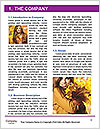 0000092544 Word Template - Page 3