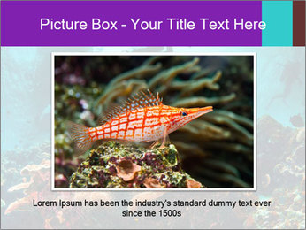 Sea scape PowerPoint Template - Slide 15