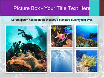 Sea scape PowerPoint Template - Slide 19