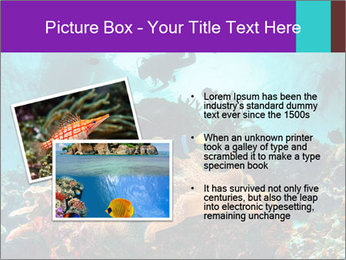 Sea scape PowerPoint Template - Slide 20