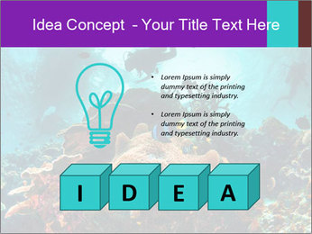 Sea scape PowerPoint Template - Slide 80