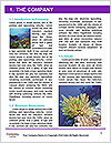 0000092554 Word Template - Page 3