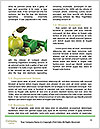 0000092559 Word Templates - Page 4