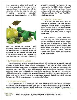 0000092559 Word Template - Page 4