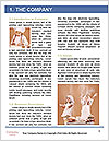 0000092560 Word Template - Page 3