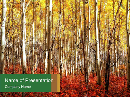 Yellow aspens PowerPoint Template