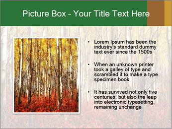 Yellow aspens PowerPoint Template - Slide 13