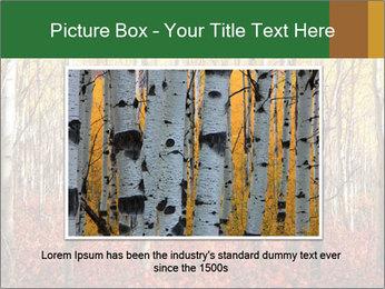 Yellow aspens PowerPoint Template - Slide 15