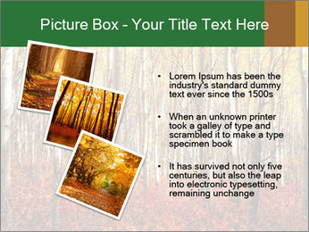 Yellow aspens PowerPoint Template - Slide 17
