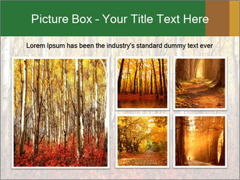 Yellow aspens PowerPoint Template - Slide 19