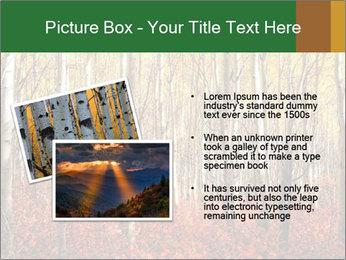 Yellow aspens PowerPoint Template - Slide 20