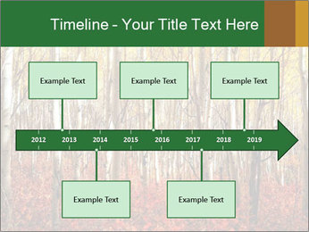 Yellow aspens PowerPoint Template - Slide 28