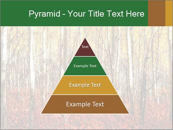 Yellow aspens PowerPoint Template - Slide 30