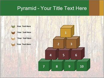 Yellow aspens PowerPoint Template - Slide 31