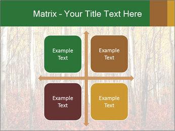 Yellow aspens PowerPoint Template - Slide 37