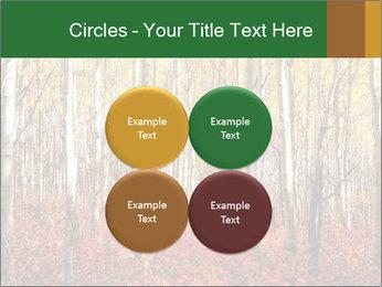 Yellow aspens PowerPoint Template - Slide 38