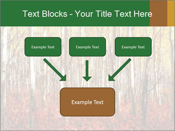 Yellow aspens PowerPoint Template - Slide 70