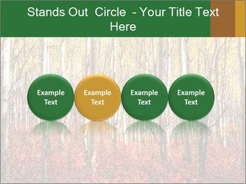 Yellow aspens PowerPoint Template - Slide 76