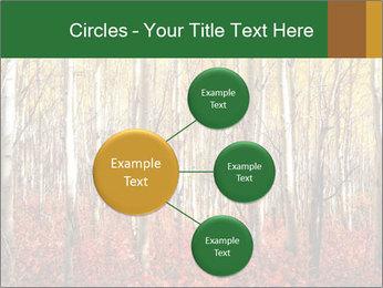 Yellow aspens PowerPoint Template - Slide 79