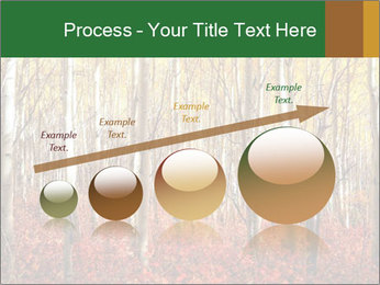 Yellow aspens PowerPoint Template - Slide 87