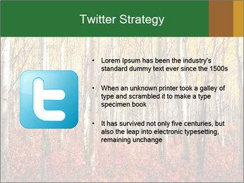 Yellow aspens PowerPoint Template - Slide 9