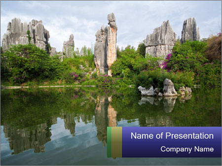 Stone forest PowerPoint Templates