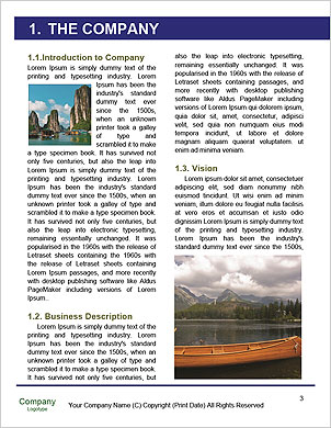 0000092571 Word Template - Page 3